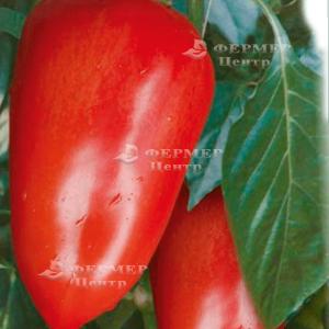 Алексий - перец сладкий фото, цена