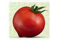Мальва F1 - томат, 10 гр, индетерминантный фото, цена