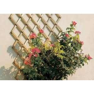 Шпалера для поддержки растений Треплас 2м х 1м (белый) фото, цена
