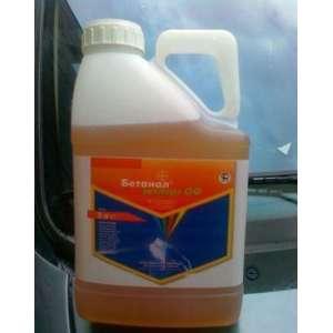 Бетанал Эксперт - гербицид, Bayer (Байер), Германия фото, цена