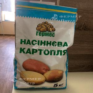 Кристина - ранний картофель 1 репродукции, 5 кг  ( Гермес) фото №2, цена
