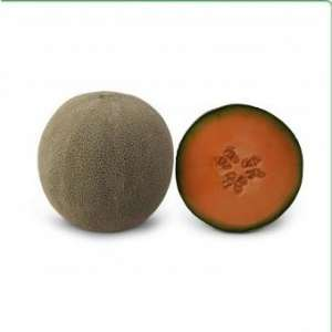 КС 7084 F1 - семена дыни, KITANO фото, цена