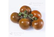 КС 3900 F1 - томат индетерминантный, Kitano (Япония) фото, цена