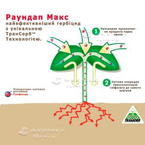 Раундап Макс - гербицид, Monsanto (Монсанто), Украина фото №1, цена