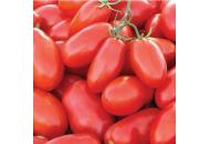 Тейлор F1 – томат, 25 000 семян, Nunhems (Нунемс) Голландия фото, цена