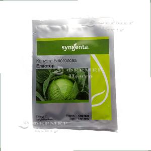 Эластор F1 - капуста белокочанная, 2 500 семян, Syngenta (Сингента), Голландия фото №1, цена