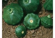 Старшип F1 - патисон зелений, 500 насіння, Syngenta (Сингента), Голландія фото, цiна