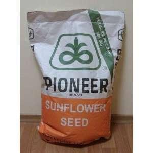 P63LE113 Новый - семена подсолнечника,1п.е., Pioneer (Пионер) Дюпон фото, цена