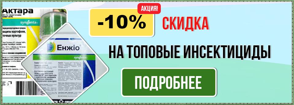 insekt-ru