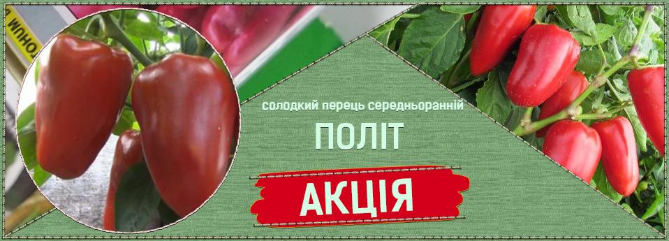 polet-ua