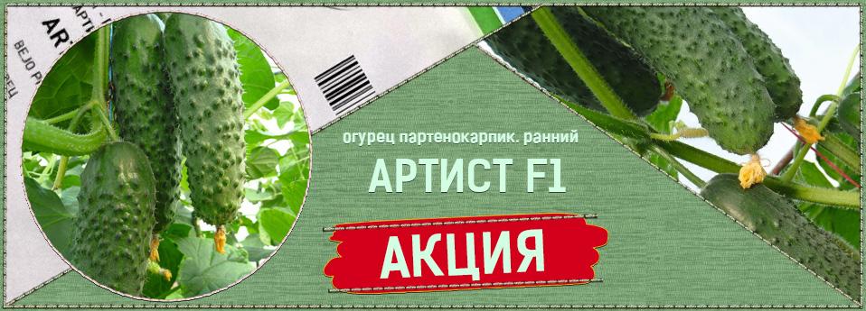 artist-rus