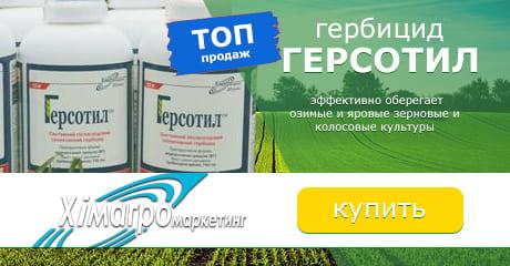 Герсотил - гербицид, фото, цена