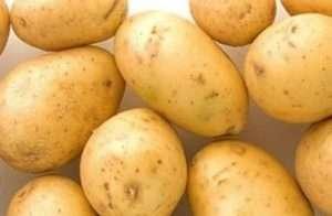 Агата - весовой картофель, 1 кг фото, цена