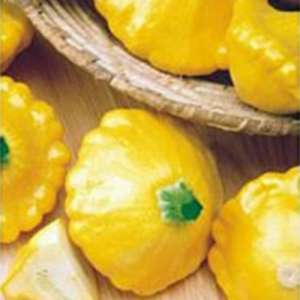 Солнечное очарование F1 - патиссон, 500 семян, Seminis Голландия фото, цена