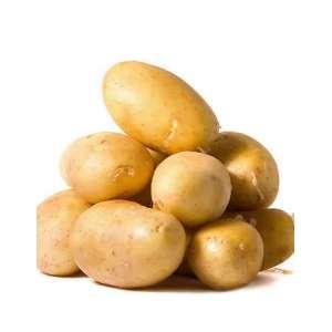 Тирас - картофель ранний (Украина) фото, цена