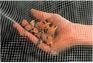 Сетка для сушки и сбора плодов Плурима 100м х 1м (оранжевый)