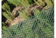 Сетка для декоративного ограждения Аири 30м х 1м (зеленый)