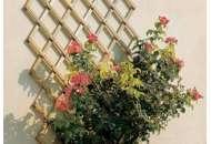 Шпалера для поддержки растений Треплас 2м х 1м (белый)