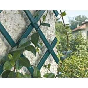 Шпалера для поддержки растений Треплас 2м х 1м (зеленый) фото, цена