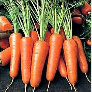Мазурка - морковь, 50 г, Nasko Украина фото, цена