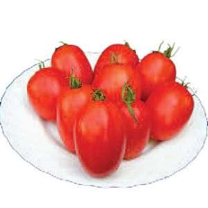 Велоз F1 - томат детерминантный, 1000 семян, Seminis Голландия фото, цена