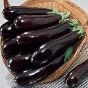 КС 27 F1 - семена баклажана, 1000 семян, KITANO/Китано (Япония) фото, цена