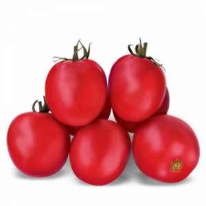 Асвон F1 - томат детерминантный, 5 г семян, Kitano (Китано) Япония фото №1, цена
