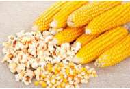 Попкорн - кукуруза, 10 гр., Цезарь