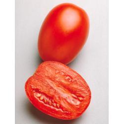 Гваделетте F1 - томат детерминантный, 1000 семян, Seminis Голландия фото, цена